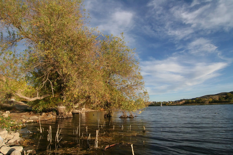 Lake Elizabeth 096_filtered.jpg