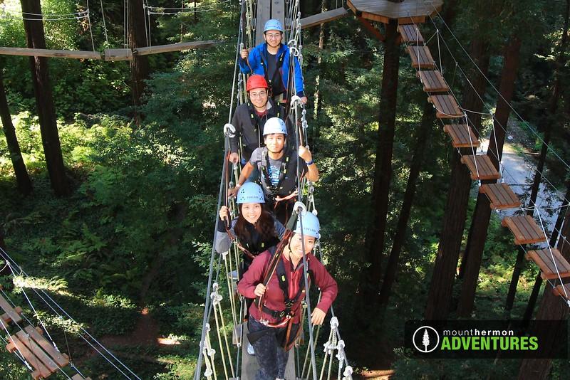 sequoiaportrait_1475701530811.jpg