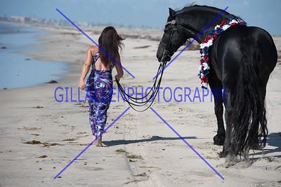 Beach 2015 - Xena SJOERD
