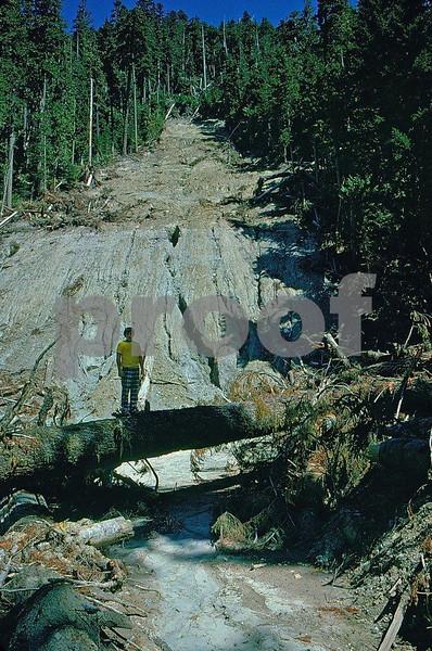 Debris avalanches