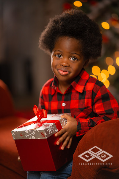 Holiday Minis 2020-07714.JPG