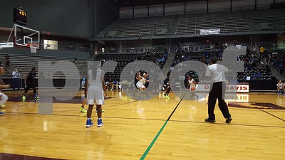 john-tyler-lady-lions-fall-to-spring-dekaney-in-regional-semifinals