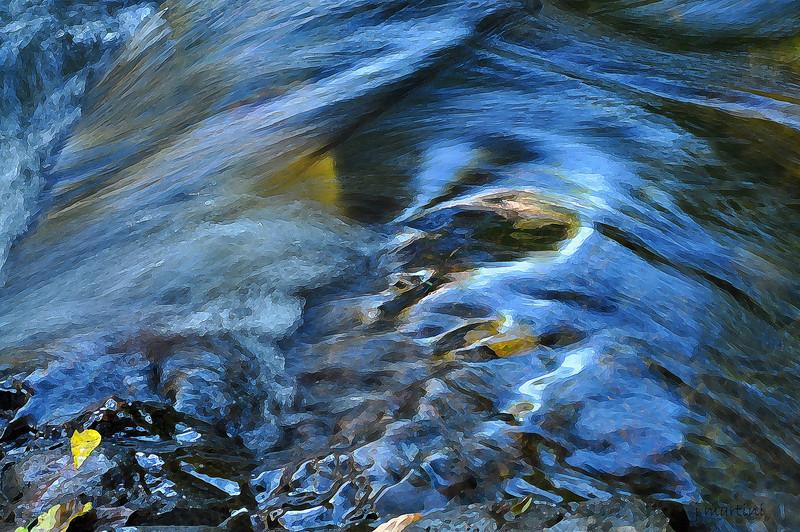 water study 1 8-23-2010.jpg