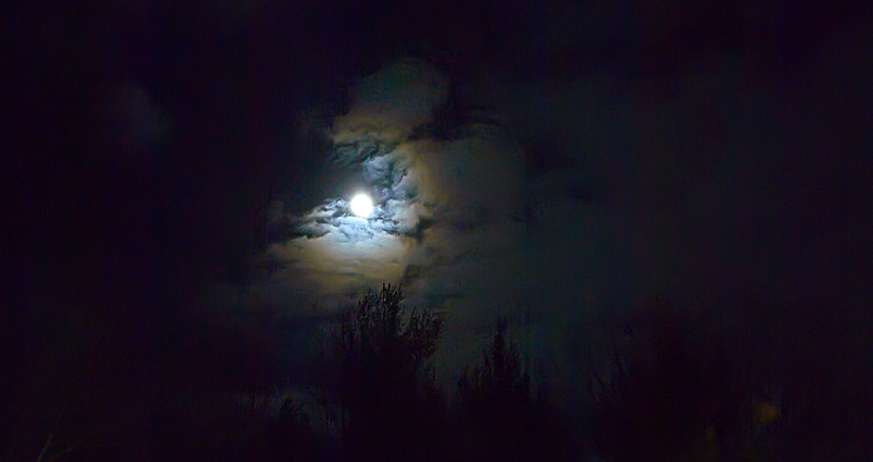 09 Nicol T-Day 2007 - Moon Shot crop.jpg