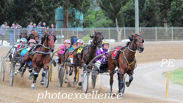Penrith Paceway 9th January, 2014