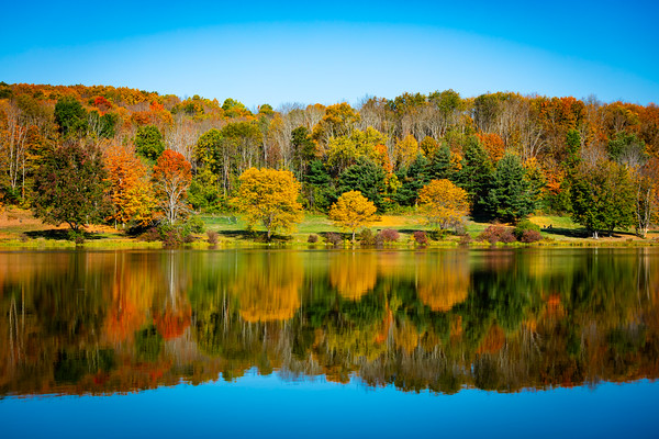 NEPA Fall and Landscapes