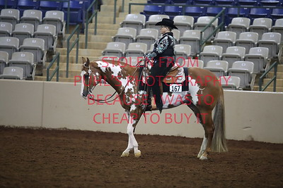 sun 143. APHA - Am Western Horsemanship All Ages