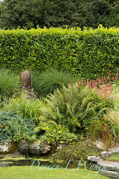 Beechleigh Garden - Jacky O'Leary garden designer_2959.jpg