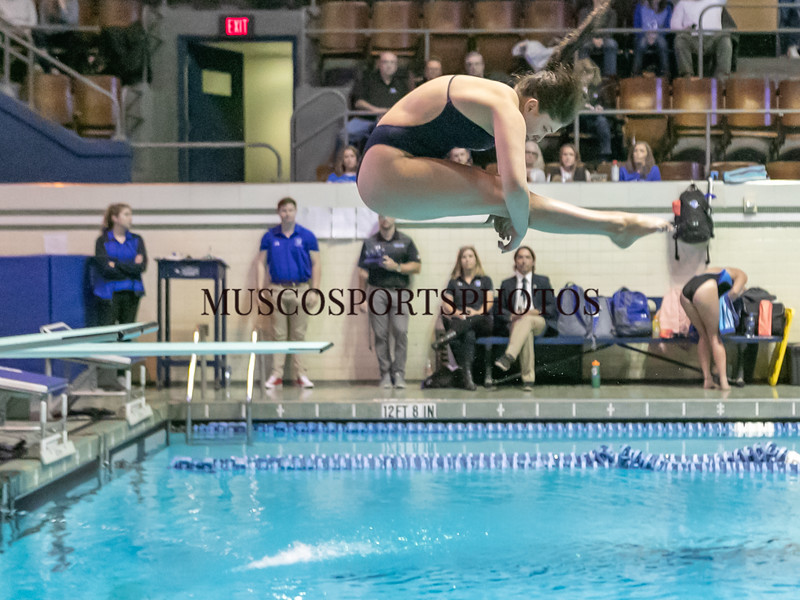 Swimming-diving vs Seton Hall_1230.jpg