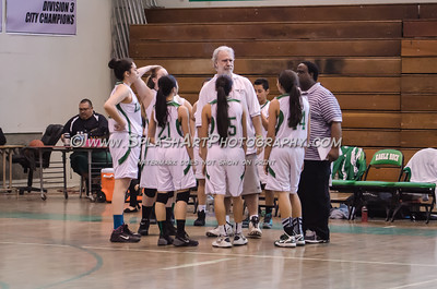 2015 Basketball Eagle Rock Girls vs Franklin 14Jan2015
