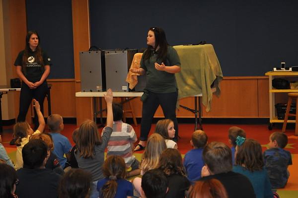 Homeschool Hub / Raptors 101