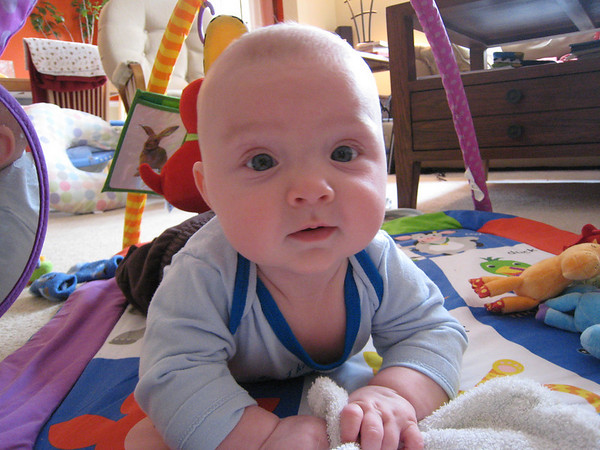 Colin - Month 4-6 (Jan-March)