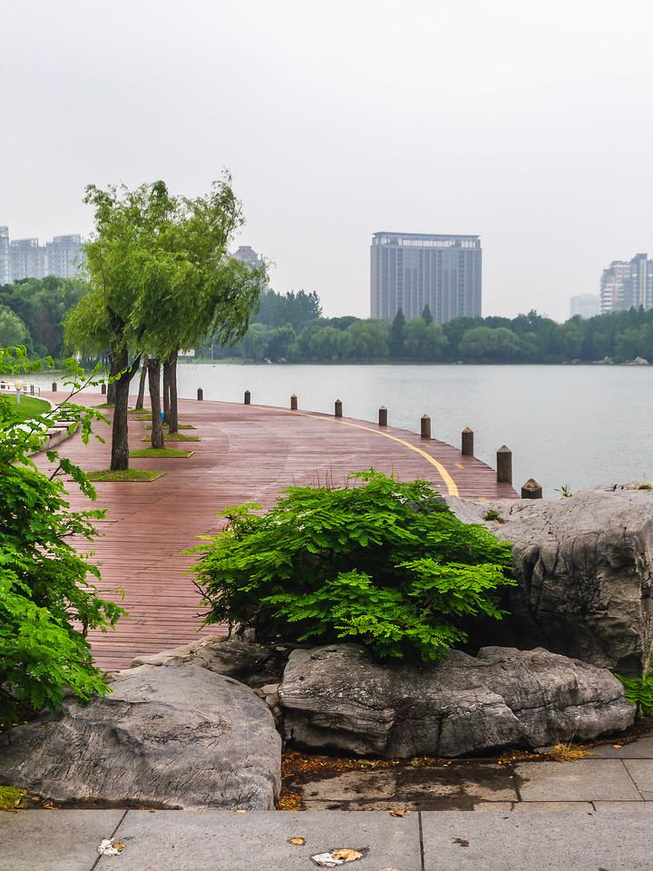 上海世纪公园,大城市中的大公园