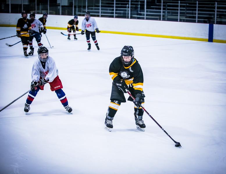 Bruins2-598.jpg