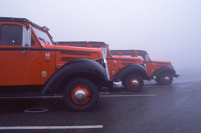 "Ford ""Jammer"" Buses at Logan Pass, Glacier National Park, MT"