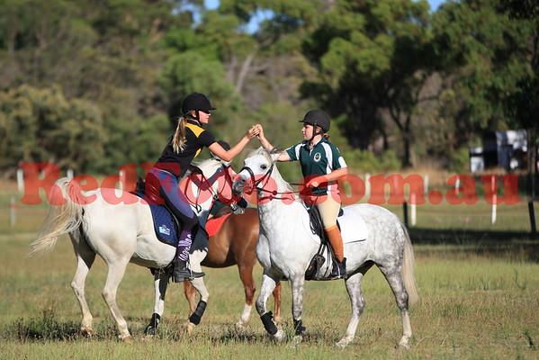 MGA Training Day Wanneroo Pony Club January