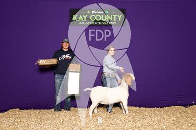 Kay County Livestock Show
