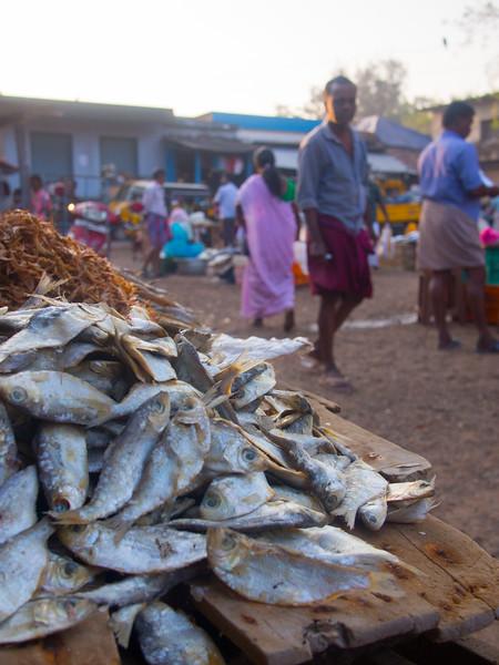 kerala market 2.jpg