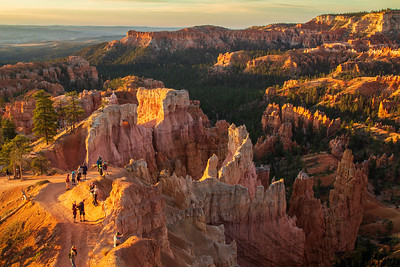 Bryce Canyon in Sun