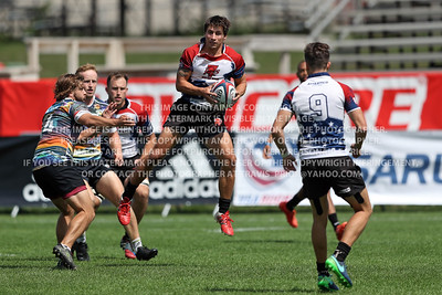 Chicago Lions Rugby Men 2017 USA Rugby Club 7's National Championships