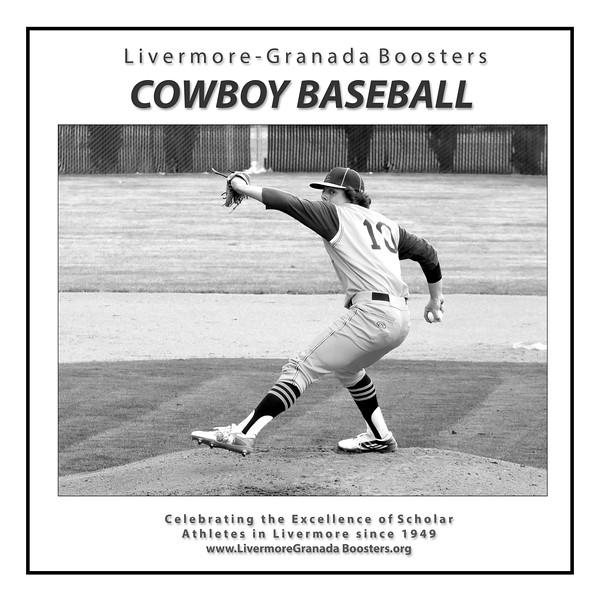 Baseball - LHS - 01 Pitcher.jpg