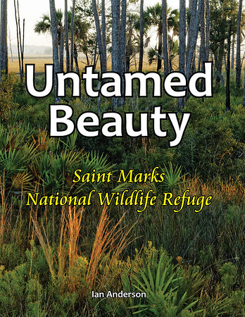 Untamed Beauty: Saint Marks National Wildlife Refuge