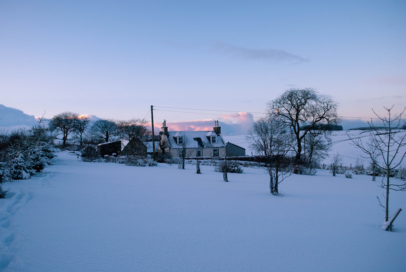 Scroghill Snow (7 of 21)