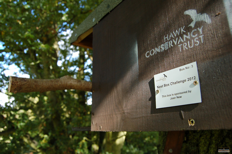 Hawk Conservancy, 13/14 Oct 2012