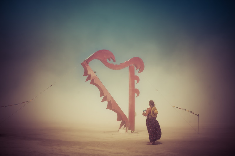 quiet-reflection-harp-burning-man-2013.jpg
