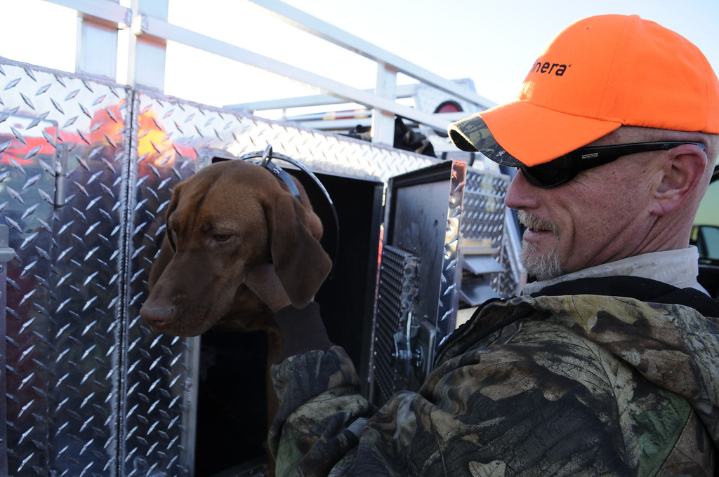 . Marty Snella checks in on his pheasant hunting Vizslas, including Thelma and Louise, before heading out to the field for opening day in Holyoke, Saturday, November 9, 2013. Thousands of hunters from around the state converged on Colorado\'s eastern plains for pheasant and quail hunting with reports of slightly improved conditions over last season.