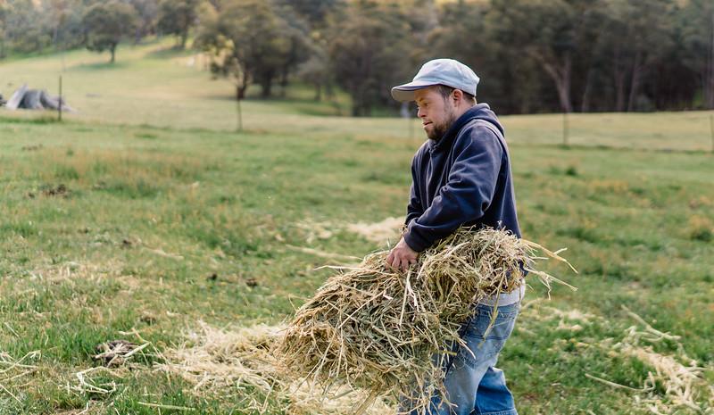 Man working on a Farm