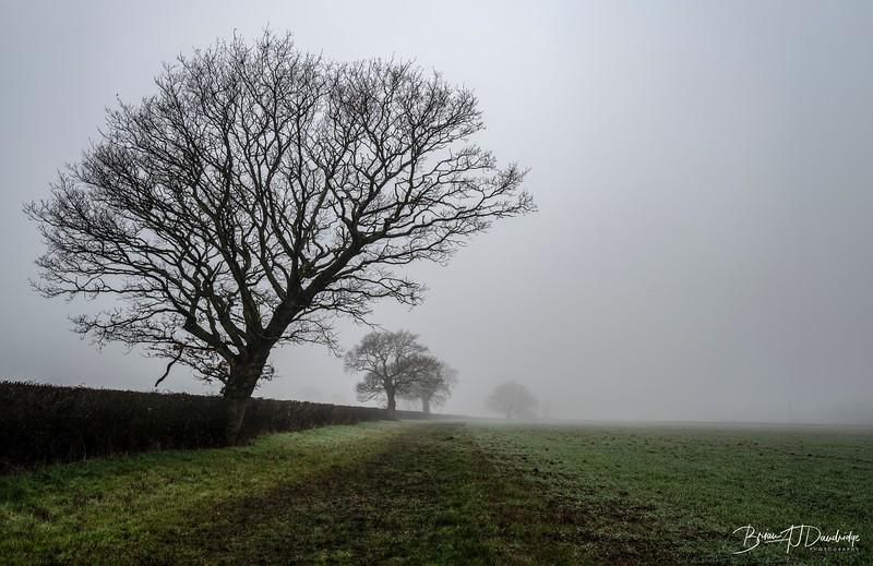 Foggy Hassocks-6915-Edit.jpg