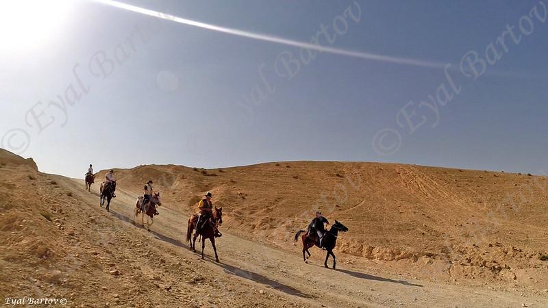 Sirin Riders 32.jpg