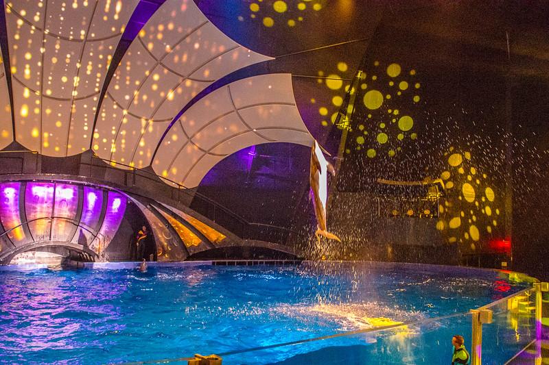 GA Aquarium with Linc, Ali & Abe-111.jpg
