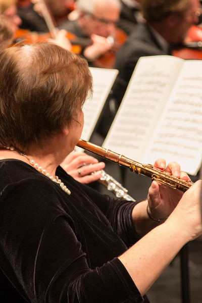 Colleen Darkow -- Symphony of the Potomac at the Cultural Arts Center, Silver Spring, MD, February 2018.