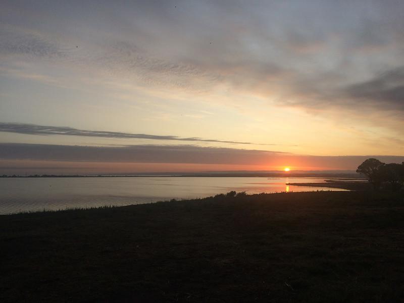 Stingaree Bay 26 January 2020 01  .jpg