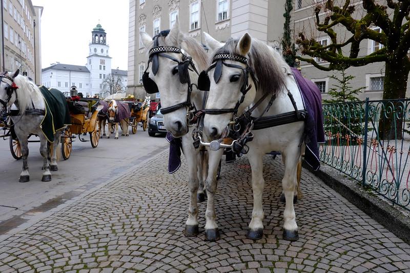 Salzburg_20141205_0007.jpg