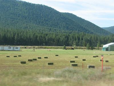 Montana #2