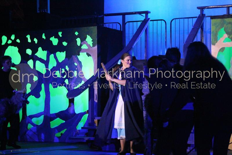 DebbieMarkhamPhoto-Opening Night Beauty and the Beast408_.JPG