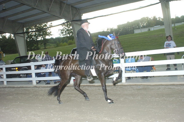 CLASS 11 OPEN 2 YR OLD