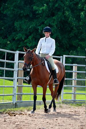 Classes 45-47  Adult w/t Equitation, Pleasure, Show Hack