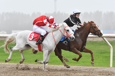 Ponnygalopp Jägersro 171015