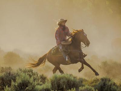 Wyoming:  Absaroka Ranch
