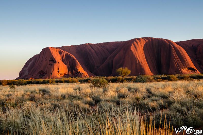 Australia-531.jpg