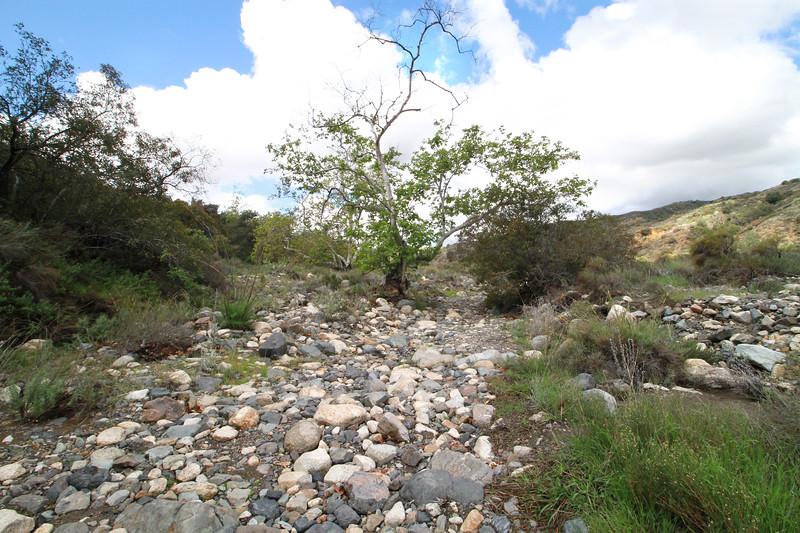 32633-Trabuco-Canyon-Rd-Mitchell-East-Trabuco-Canyon_88.JPG