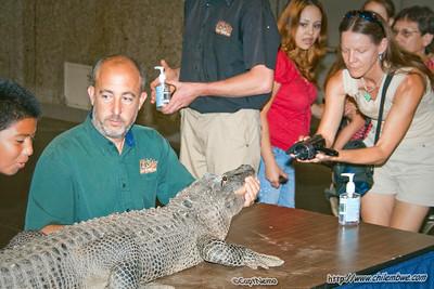 Sacramento Reptile expo 2009