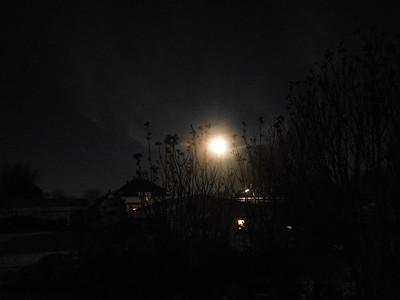 Moon 3-12-17