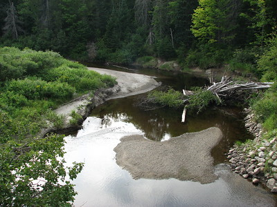 Alder Stream