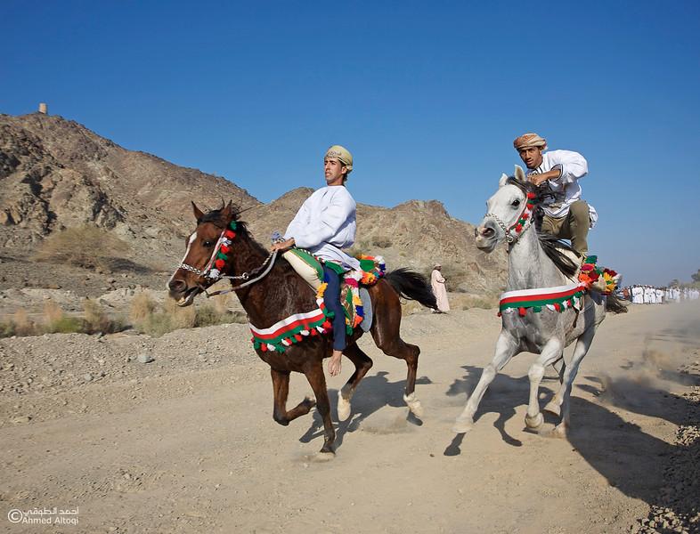 Horses Race  (1).jpg