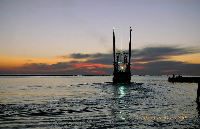 My daughter spent a week in Biloxi MS. cleaning up after the hurricane last November. This is one of the only shrimp boats that was not wrecked.